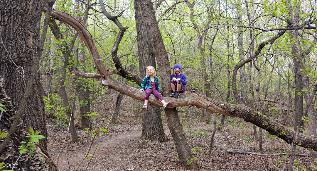 A Day in the Life: Learning Through Unschooling