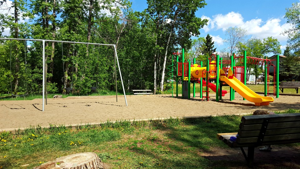 Get Back To Nature: Braeside & Forest Lawn Ravines, St. Albert