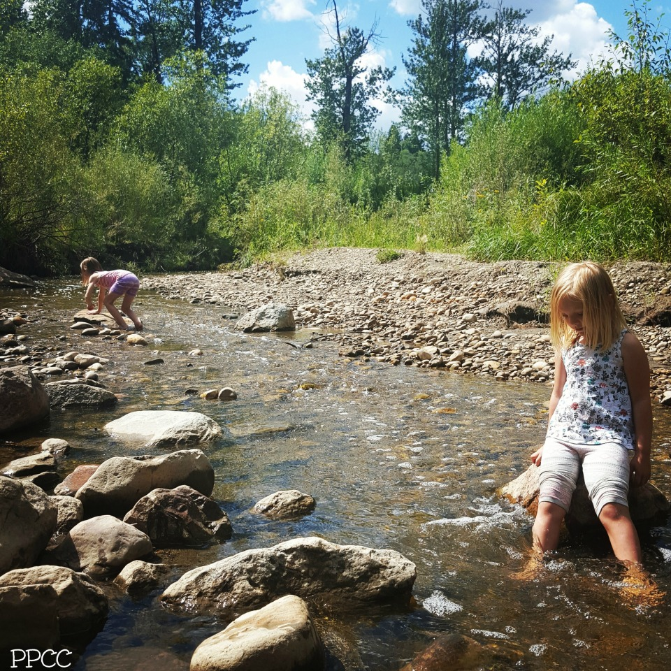 Get Back to Nature: Gold Bar Park Stream