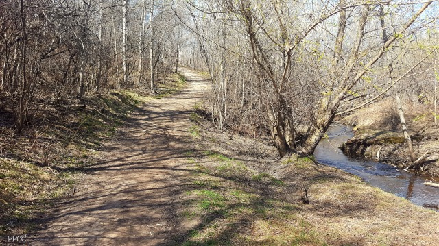 Get Back To Nature: Upper Mill Creek Ravine