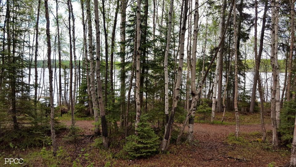 Get Back To Nature: Carson-Pegasus Provincial Park