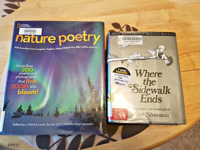 Day 8: Poetry Tea Time - 31 Days of our Favorite Homeschooling Activities